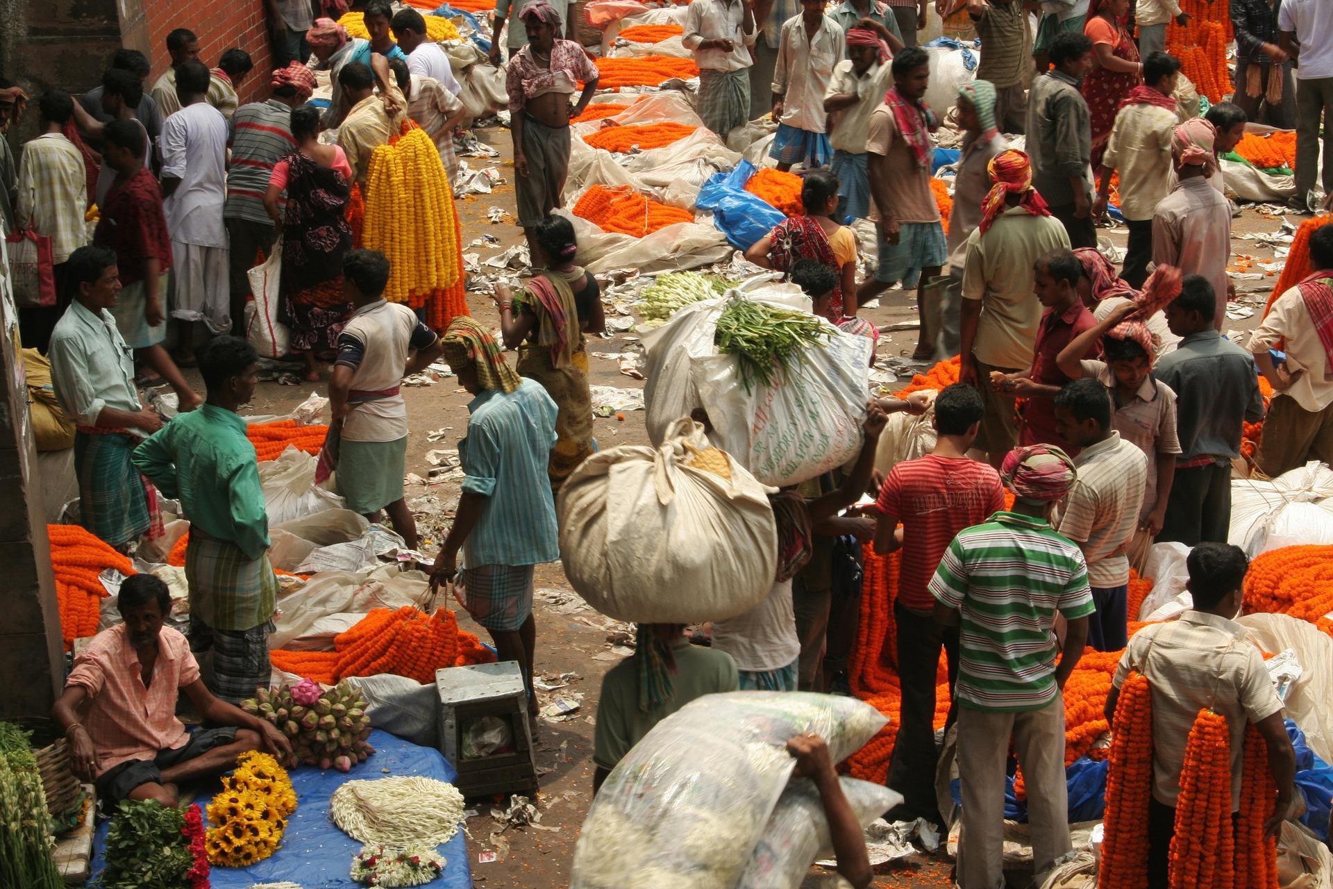 india-1478541_1920